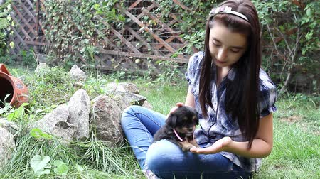 щенок : Girl with her puppy. Sweet moment of connection between child and her pet. Стоковые видеозаписи