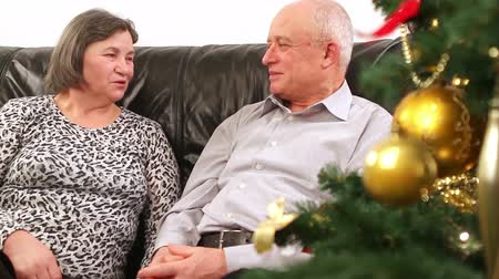 emekli olmak : Elderly happy couple talking near a Christmas tree. They are out focus and then comes in focus when camera close to them. Stok Video