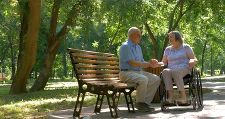unconditional : Senior man talking with woman in wheelchair outside in summer park. 4k
