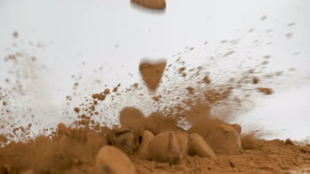 Cocoa chocolate truffles falling in cocoa powder on white background. Slow motion at 180 fps.