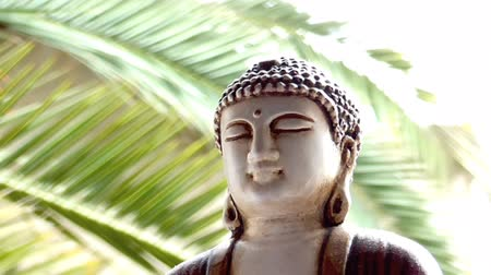 budha : Peaceful Buddha with tree background, close up. Close up scene of Buddha, outdoor, sunny day