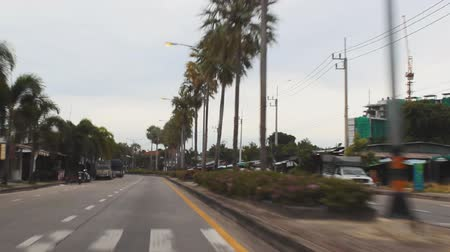 ortam : Driving on road with palm tree Stok Video