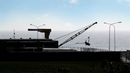iyi olmak : Crane in the Costanera of the Rio de la Plata in Buenos Aires