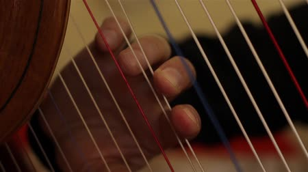Male Hand Playing Harp String.