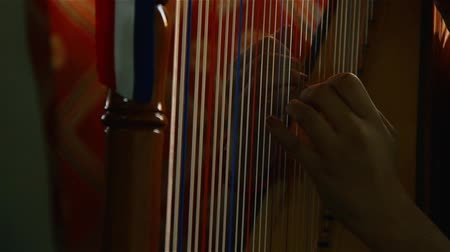 Girl Playing The Paraguayan Harp. Stock mozgókép