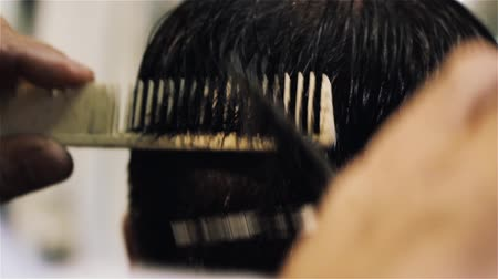 Male Hairdresser Cuts Hair.