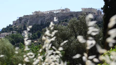 arkeolojik : Acropolis Hill, Athens, Greece on a windy day Stok Video
