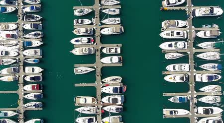 voar : Aerial view of marina full of yachts and boats Stock Footage