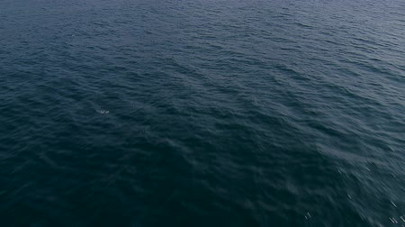 diretamente : Low angle aerial view above the ocean water Stock Footage