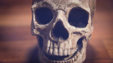 crânio : Human Skull dolly parallax shot with wooden background, shallow depth of field. Vintage colors Vídeos