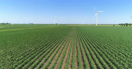 turbine : Aerial low angle view of green crops on countryside field and Wind turbine, agriculture industry