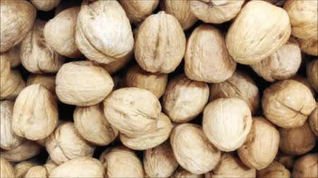 avelã : texture of nuts Stock Footage