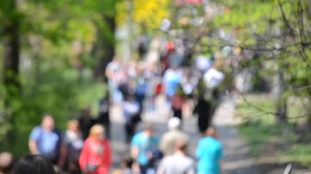 blur : Many people, the crowd, the traffic walking along the road in the park in spring with trees and green leaves on a sunny day. blurred background Stock Footage