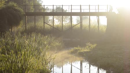 bridgework : Old Bridge early in the morning in the summer with a small river and the sun shining