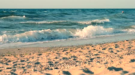 nascer do sol : the sea and the sandy beach, with white tops of waves lapping on the shore, the filter