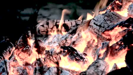 briquettes : The fire is burning, the fire close-up