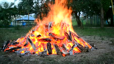 sacramental : One large burning fire and a piece of wood falls on the meadow in the evening Stock Footage