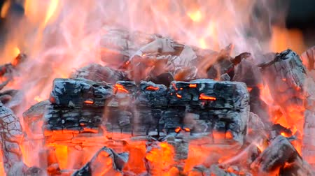 warms : piece of burnt wood smokes and burns in the fire close-up