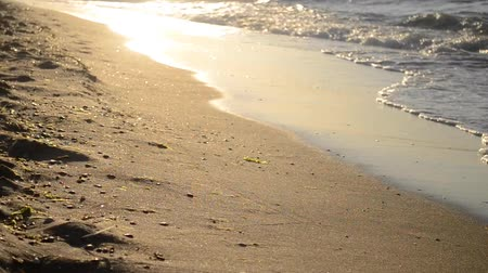 sabah : the sun is reflected in waves rolling on a sandy beach, close-up