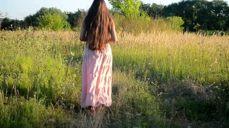 brown dress : girl with long brunette hair walking along the road in a field