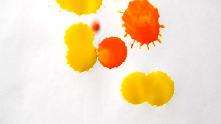 gotas : Dripping colored drops on white background. Drops of different colors dripping on white background. Creative abstract drops fall on the white surface. Isolated multi-colored drops on white background