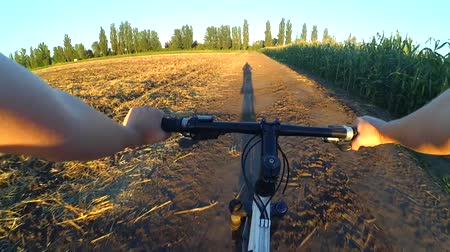управлять : A girl rides bicycle on the ground in a summer field during sunset sunrise. Long shadow before the rider. Hands and helm. Concept activity, health, sports, relax vacation travel. Стоковые видеозаписи