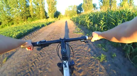 управлять : A girl rides bicycle on the ground in a summer field during sunset sunrise. POV. Long shadow before the rider. Hands and helm. Concept activity, health, sports, travel.