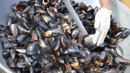 shellfish recipe : Preparation of Black Sea mussels close-up Stock Footage