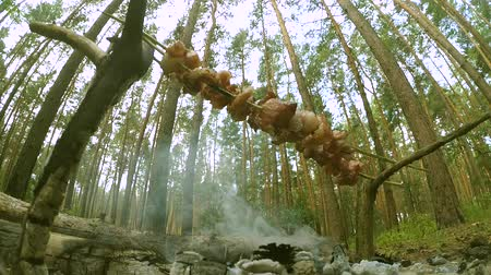 špejle : Barbecue skewers of lard bacon in the forest from below close-up. Concept of relaxation camping hike picnic.