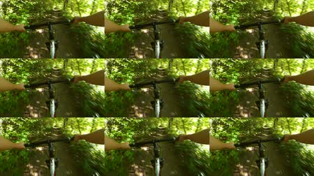 yönlendirmek : Abstract animation wall. Person cycling on bicycle ride green forest on sunny day. Biking on path in forest. Point of view pov mtb gopro action camera. Multicam split screen group video montage Stok Video