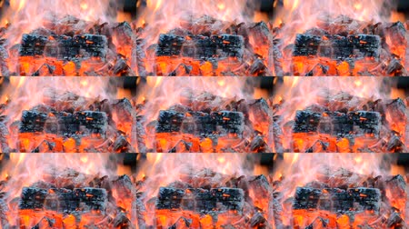 warms : Pece of burnt wood smokes and burns in the fire close-up. Multicam split screen group montage background. Abstract animation wall. Stock Footage