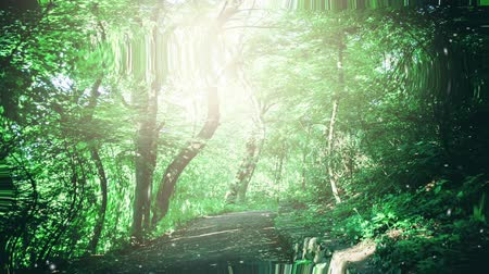 surrealismo : Path in leafy green forest with glare patch of reflected light in the summer day. Natural background. Environment, ecology. Reflection in water, underwater water ripples surrealism abstract waves