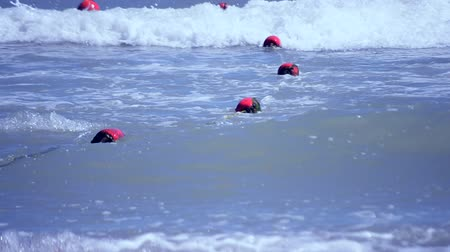 linha de costa : Red old enclosing buoys with green algae float on waves in the sea on summer sunny day Vídeos
