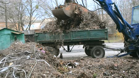full bucket : Cleaning dry branches and grass on city streets loading into truck trailer. Cleaning dry leaves tractor bucket. Old tractor bucket picks up old and dry branches and leaves and plunges it into a truck. Stock Footage