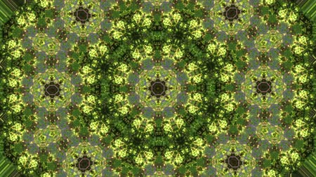 surrealismo : Abstract animated kaleidoscope motion background. Sequence multicolored graphics ornament patterns. Bright luminous light backdrop. Multicolored seamless loop background. Natural green yellow backdrop