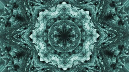 surrealizm : Abstract animated kaleidoscope motion background. Sequence multicolored graphics ornaments patterns. Dark black green white backdrop. Seamless loop background. Wideo