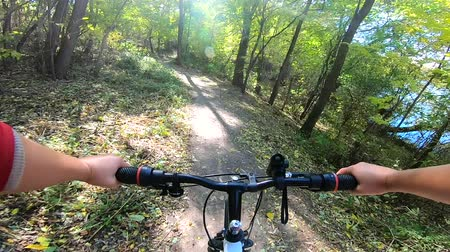 bisikletçi : Girl rides bicycle through forest. A man on a bicycle rides in forest in the autumn in sunny weather. Concept activity, health, sports, relax vacation travel. POV. Stok Video