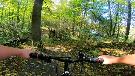 magas szög : A Caucasian man with a bicycle is riding in the forest path in the summer.POV. Caucasian.  Concept Adventure Active Lifestyle Sports. View from first person perspective.