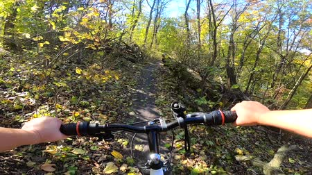 wooden path : Girl rides bicycle through forest. Girl rides bike along path in forest in autumn with sunlight. Concept Adventure Active Lifestyle Sports. View from first person perspective