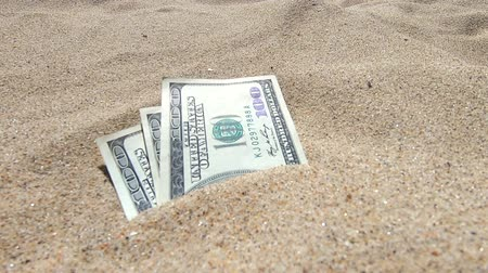buried : Money dolars half covered with sand lie on beach close-up. Money grows out of the ground. Dollar bills partially buried in sand on sea ocean beach Concept finance money holiday relax vacation. Stock Footage