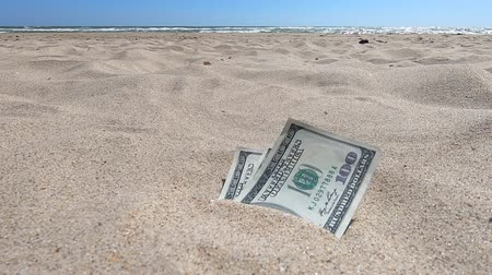 earnings : Money dolars half covered with sand lie on beach close-up. Money grows out of the ground. Dollar bills partially buried in sand on sea ocean beach Concept finance money holiday relax vacation. Stock Footage