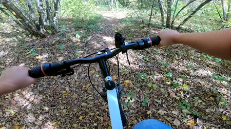 wooden path : A Caucasian man with a bicycle is riding in the forest path in the summer.POV. Caucasian. Concept Adventure Active Lifestyle Sports. View from first person perspective.