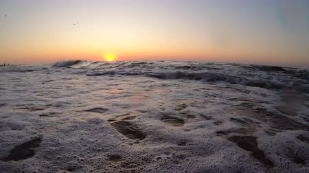 Sunset sunrise dawning at sea ocean. Water and waves sea landscape scenery country scene background on dusk sunrise dawning daybreak daylight sunset sundown dawn and sand beach. Bottom view Vídeos