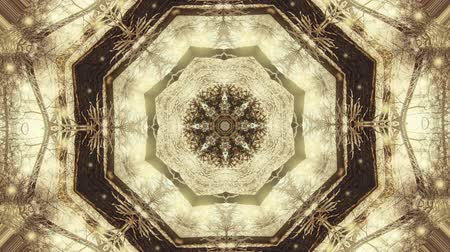 surrealizm : Abstract animated kaleidoscope motion background. Sequence graphics ornaments patterns. White brown beige structure motifs sequins. Bright impulsively luminous light backdrop. Seamless loop background