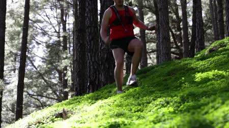 kimerül : Trail runner man running cross country run outdoors in forest. Male athlete training working out outside running fast in cross-country race.