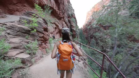 estilo de vida : Hiker woman hiking in Zion National Park. Happy female hiker trekking on walking path in Zion Canyon wearing backpack. Healthy lifestyle image with multiracial Asian Caucasian girl in Utah, USA. Vídeos