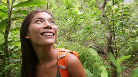 a natureza : Hiking woman trekking in forest standing looking. Young female hiker exploring rainforest walking on trek with backpack through dense rain forest nature on Maui, Hawaii, USA. Active lifestyle concept.