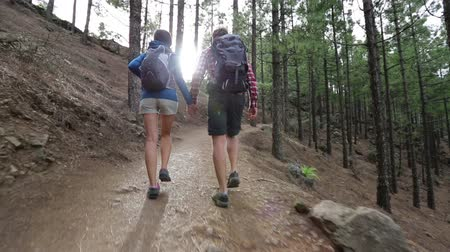 шорты : Hiking couple walking holding hands in forest. Hikers walking on hike path in woods outdoors. Young active couple on Gran Canaria, Canary Islands, Spain.