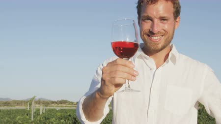 vinho : Man drinking rose or red wine toasting looking at camera at vineyard. Handsome man drinking from wine glass outdoors in front of vineyard.