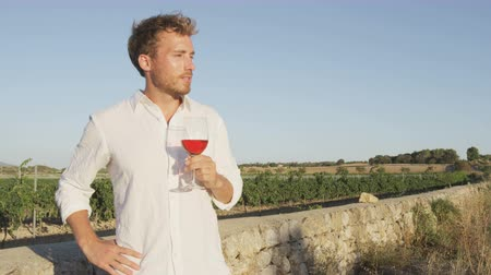 bebida alcoólica : Wine - man drinking red rose wine at vineyard. Winemaker or sommelier drinking wine from wine glass standing by vineyard. Handsome young man enjoying wine in countryside in summer.